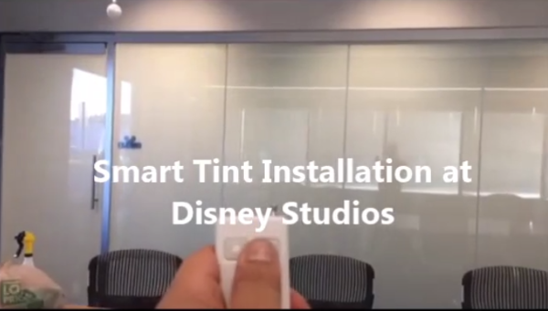 Smart Tint Client Disney